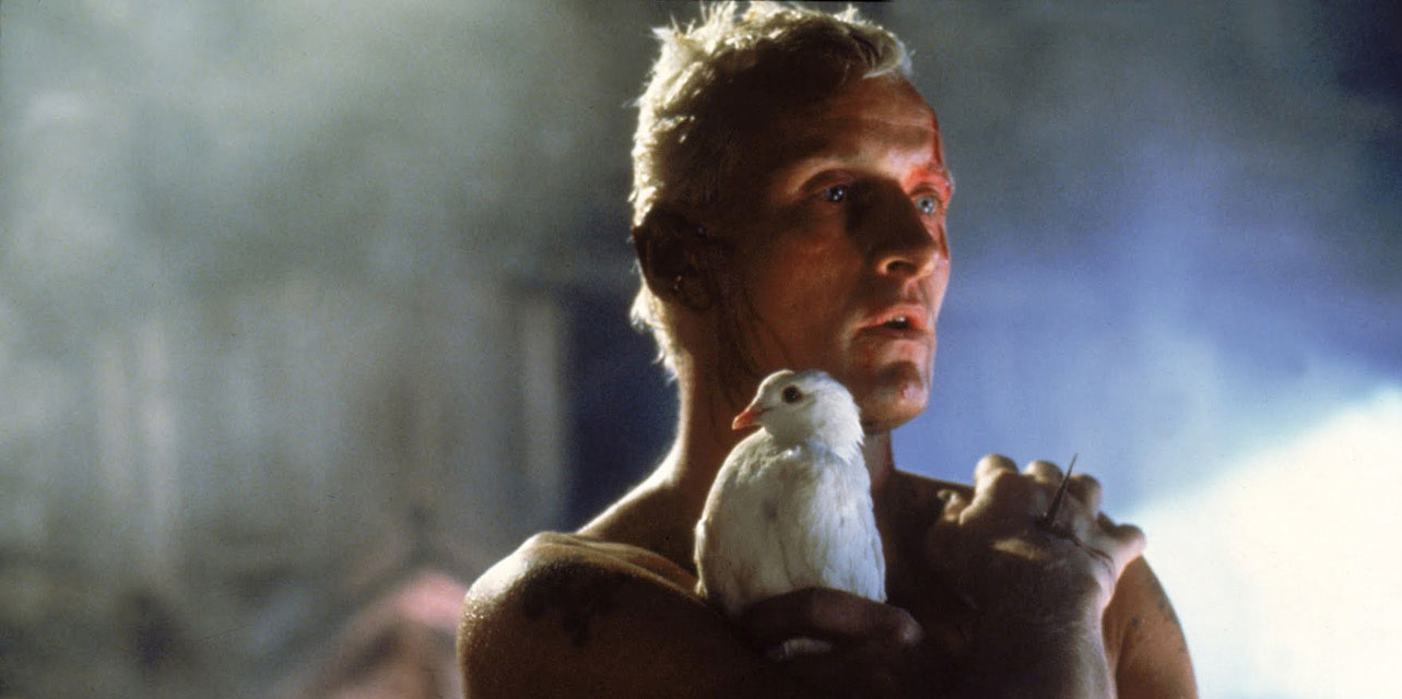 what i learned from watching blade runner cinematyler